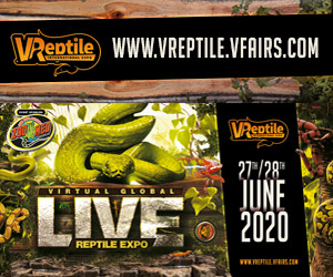 First International VIRTUAL reptile expo